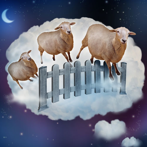 Dreaming-of-Sheep-500x500